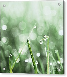 Le Reveil - S02f Acrylic Print by Variance Collections