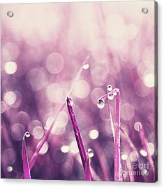 Le Reveil - S03c2b Acrylic Print by Variance Collections