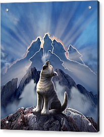 Leader Of The Pack Acrylic Print by Jerry LoFaro