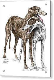 Lean On Me - Greyhound Dogs Print Color Tinted Acrylic Print by Kelli Swan
