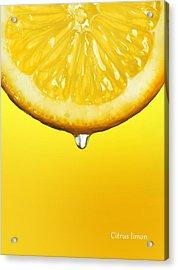 Lemon Drop Acrylic Print by Mark Rogan