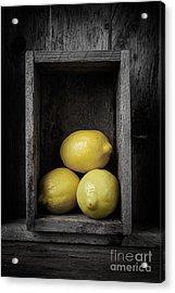 Lemons Still Life Acrylic Print by Edward Fielding