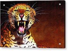 Leopard Acrylic Print by Paul Dene Marlor