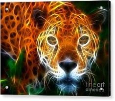 Leopard Watching At His Prey Acrylic Print by Pamela Johnson