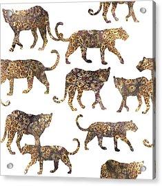 Leopards Acrylic Print by Varpu Kronholm