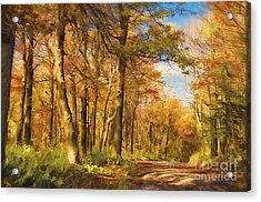 Let's Go For A Walk Acrylic Print by Lois Bryan
