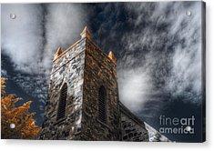 Lichen Acrylic Print by Russ Brown