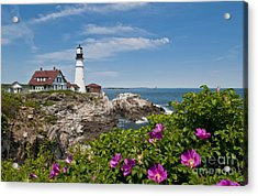 Lighthouse With Rocks On Shore Acrylic Print by Bill Bachmann and Photo Researchers
