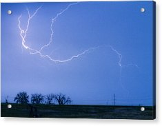Lightning Crawler Acrylic Print by James BO  Insogna