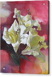 Lilies With Red Acrylic Print by Alfred Ng