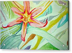 Lilly  Acrylic Print by Jame Hayes