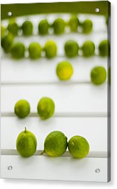 Lime Green Acrylic Print by Skip Hunt
