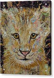 Lion Cub Acrylic Print by Michael Creese