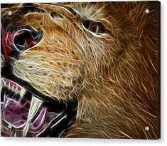 Lion Fractal Acrylic Print by Shane Bechler