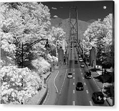 Lions Gate Bridge Summer Acrylic Print by Bill Kellett