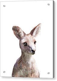Little Kangaroo Acrylic Print by Amy Hamilton
