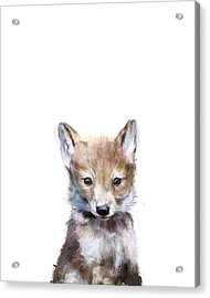 Little Wolf Acrylic Print by Amy Hamilton
