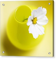 Little Yellow Vase Acrylic Print by Rebecca Cozart
