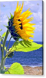 Living Is A Blessing..... Acrylic Print by Tanya Tanski