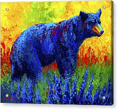 Loafing In The Lupin Acrylic Print by Marion Rose