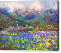 Local Color Acrylic Print by Talya Johnson