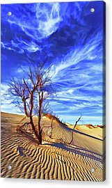 Lone Tree At Sandhills Sp Acrylic Print by ABeautifulSky Photography