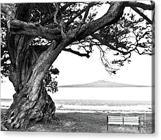 Lone Tree Bench And Volcano Acrylic Print by Yurix Sardinelly