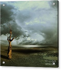Lonely Death Acrylic Print by Franziskus Pfleghart