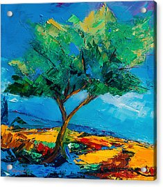 Lonely Olive Tree Acrylic Print by Elise Palmigiani