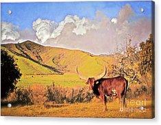 Lonesome Longhorn Ojai California Acrylic Print by Gus McCrea