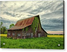 Long Forgotten Acrylic Print by Donnie Smith