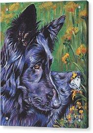 Long Hair Black German Shepherd Acrylic Print by Lee Ann Shepard