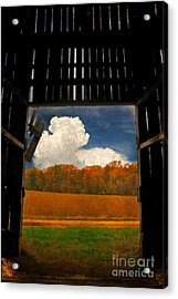 Looking Out Acrylic Print by Lois Bryan