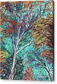 Looking Upward Acrylic Print by Alys Caviness-Gober
