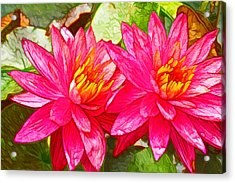 Lotus Blossom  Acrylic Print by Lanjee Chee