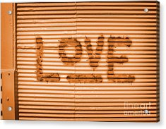 Love Is All Acrylic Print by Jorgo Photography - Wall Art Gallery