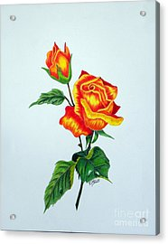 Lovely Rose Acrylic Print by Terri Mills