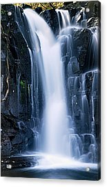 Lower Johnson Falls 3 Acrylic Print by Larry Ricker
