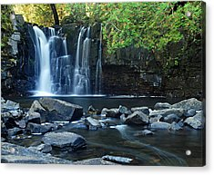 Lower Johnson Falls Acrylic Print by Larry Ricker