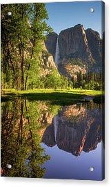 Lower Yosemite Morning Acrylic Print by Darren White