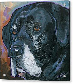 Lucy Acrylic Print by Nadi Spencer
