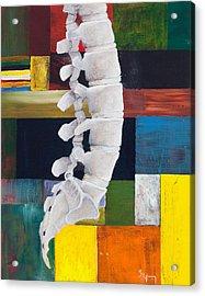 Lumbar Spine Acrylic Print by Sara Young