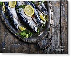 Mackerels On Silver Plate Acrylic Print by Jelena Jovanovic