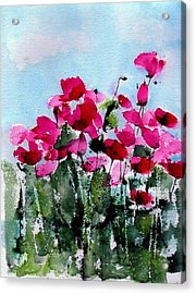Maddy's Poppies Acrylic Print by Anne Duke