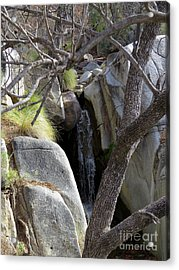 Madera Canyon Waterfall Acrylic Print by Feva Fotos