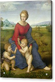 Madonna In The Meadow Acrylic Print by Raphael