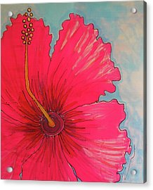 Magenta Hibiscus Acrylic Print by Kelly     ZumBerge