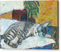 Maggie Sleeping Acrylic Print by Carolyn Donnell