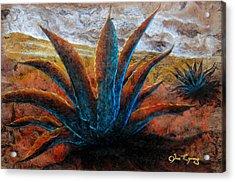 Maguey Acrylic Print by Jose Espinoza