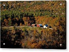 Maine Fall Colors Acrylic Print by Gary Cloud